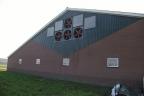 Nieuwbouw vleeskalverenstal en woonhuis Lunteren