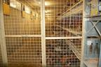 Nieuwbouw leghennenstal Lunteren